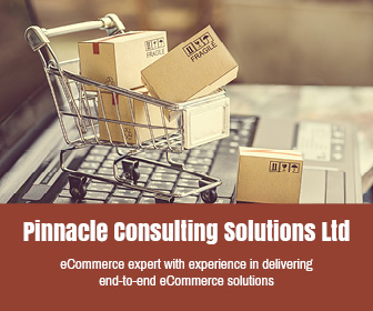 Pinnacle Consulting Solutions Ltd